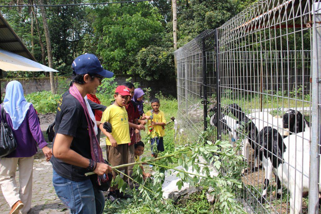 Taman Satwa dan Peternakan Sato Loka Jogja Yogykarta